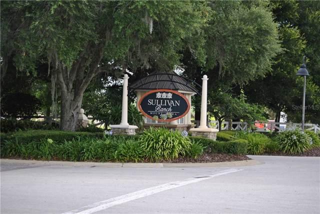 30101 Bretton Loop, Mount Dora, FL 32757 (MLS #O5812147) :: Team 54