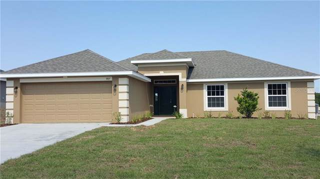 800 Edith Drive, Fruitland Park, FL 34731 (MLS #O5812298) :: Premium Properties Real Estate Services