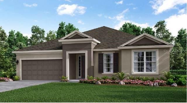855 Zeek Ridge Road, Clermont, FL 34715 (MLS #O5812544) :: Cartwright Realty