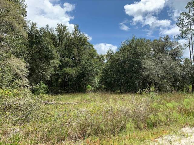 Oil Well Road, Clermont, FL 34714 (MLS #O5812550) :: The Light Team