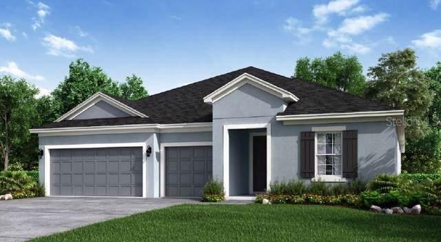 859 Zeek Ridge Court, Clermont, FL 34715 (MLS #O5812553) :: Cartwright Realty