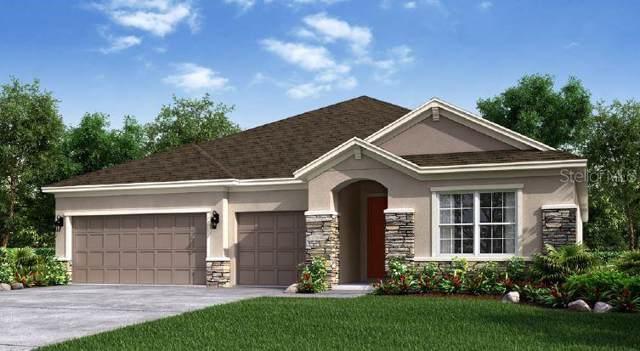 863 Zeek Ridge Court, Clermont, FL 34715 (MLS #O5812558) :: Cartwright Realty