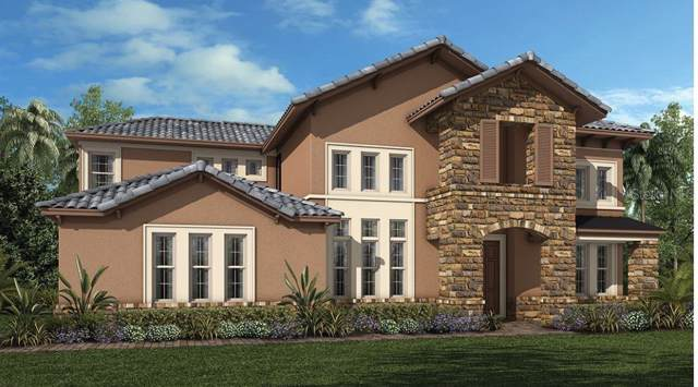 7526 John Hancock Drive, Winter Garden, FL 34787 (MLS #O5812691) :: Homepride Realty Services