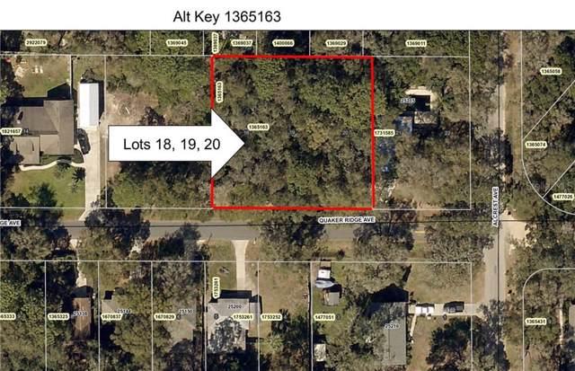 25213 Quaker Ridge Avenue, Mount Plymouth, FL 32776 (MLS #O5812765) :: The Duncan Duo Team