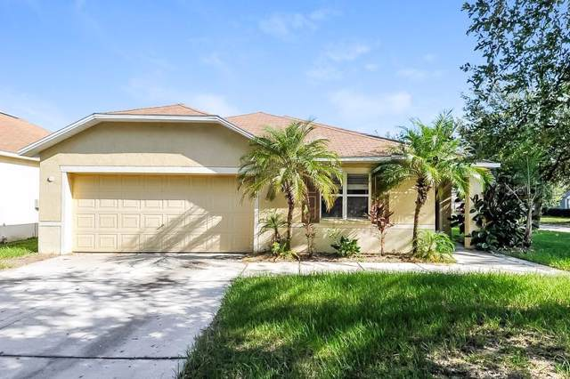 13518 Red Ear Court, Riverview, FL 33569 (MLS #O5812852) :: Dalton Wade Real Estate Group