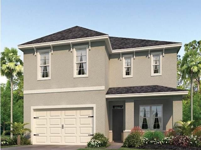 3543 Crimson Clover Drive, Mount Dora, FL 32757 (MLS #O5812941) :: Griffin Group
