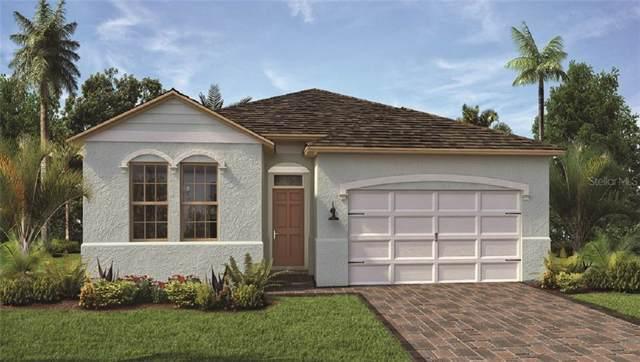 3655 Beautyberry Way, Clermont, FL 34711 (MLS #O5813117) :: Burwell Real Estate