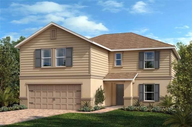 6512 Domenico Court, Groveland, FL 34736 (MLS #O5813142) :: White Sands Realty Group
