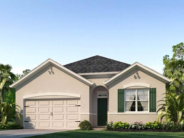 878 Killarney Lane, Auburndale, FL 33823 (MLS #O5813224) :: Alpha Equity Team