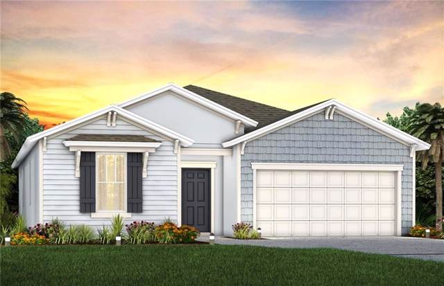 2454 Citrus Overlook Street, Apopka, FL 32712 (MLS #O5813253) :: The Light Team
