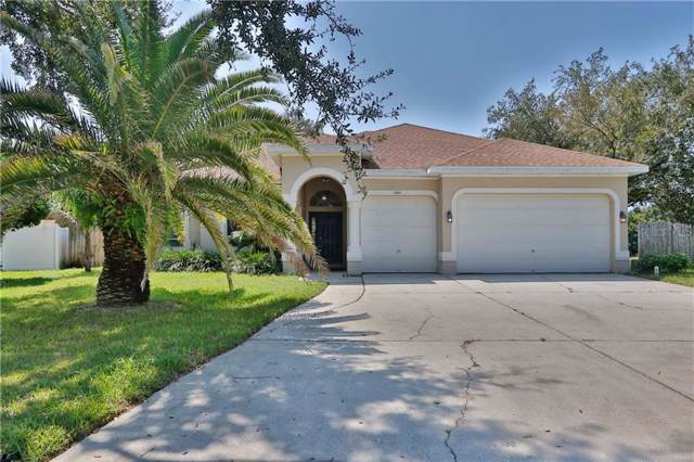 1932 Anclote Vista, Tarpon Springs, FL 34689 (MLS #O5813812) :: Paolini Properties Group