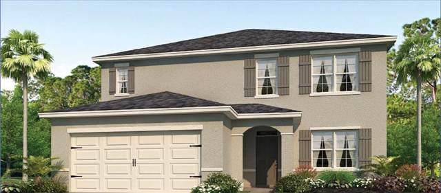 2340 White Poppy Drive, Kissimmee, FL 34747 (MLS #O5814543) :: Zarghami Group