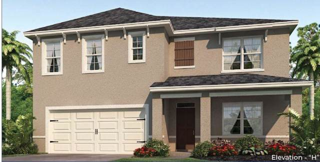 2336 White Poppy Drive, Kissimmee, FL 34747 (MLS #O5814556) :: Premium Properties Real Estate Services