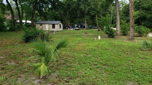 923 S Lake Pleasant Road, Apopka, FL 32703 (MLS #O5814868) :: Griffin Group