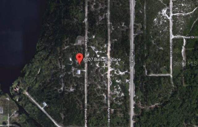 6707 Balsam Place, Sebring, FL 33875 (MLS #O5815078) :: BuySellLiveFlorida.com
