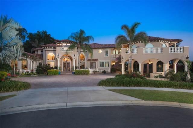 9659 Castle Way Drive, Windermere, FL 34786 (MLS #O5815388) :: Cartwright Realty