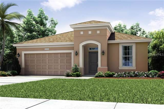 4244 Prima Lago Circle, Lakeland, FL 33810 (MLS #O5815986) :: Griffin Group