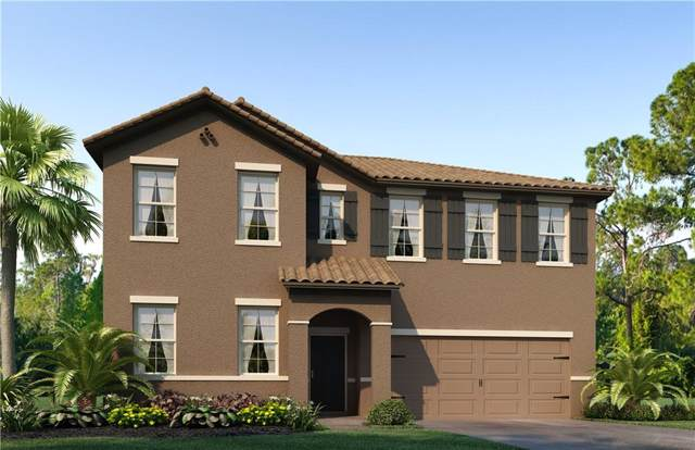 4240 Prima Lago Circle, Lakeland, FL 33810 (MLS #O5816020) :: Griffin Group