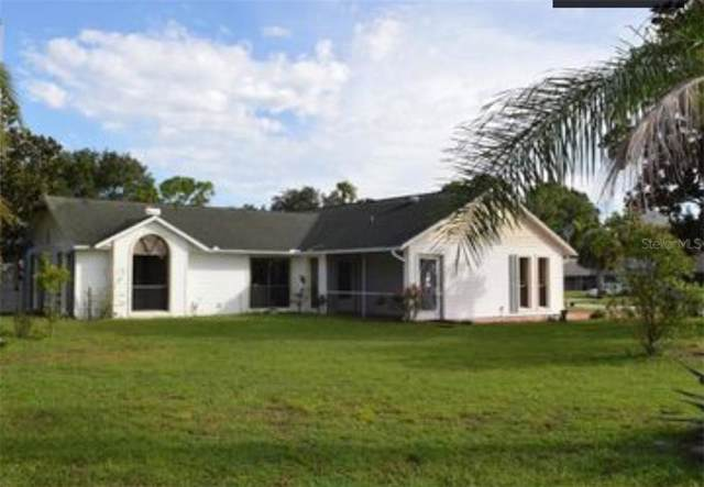 1830 Victory Palm Drive, Edgewater, FL 32132 (MLS #O5816328) :: Florida Real Estate Sellers at Keller Williams Realty