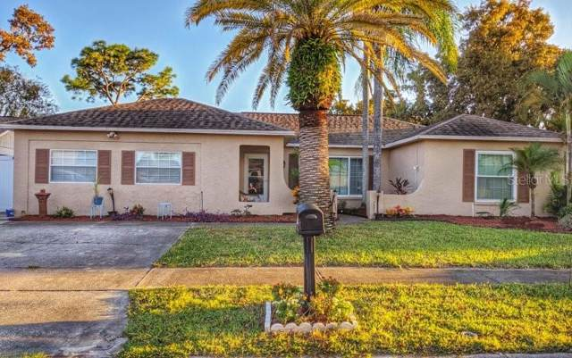 2504 Pinetta Court, Holiday, FL 34691 (MLS #O5816497) :: Griffin Group