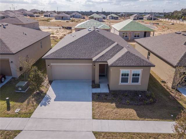 873 Orchid Grove Boulevard, Davenport, FL 33837 (MLS #O5816970) :: Rabell Realty Group