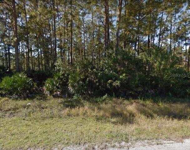 815 Truman Avenue, Lehigh Acres, FL 33972 (MLS #O5817310) :: The Duncan Duo Team