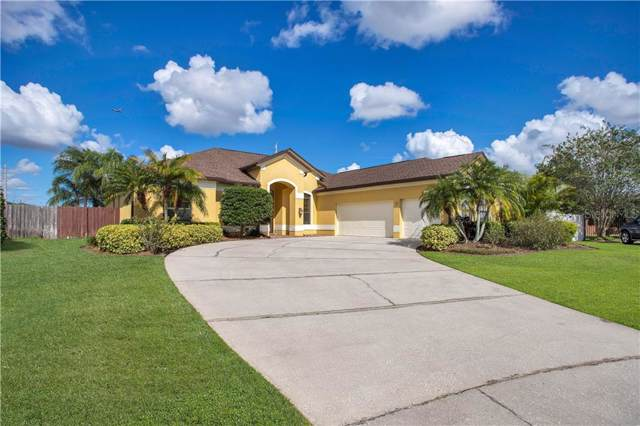 4330 Kezar Court, Orlando, FL 32812 (MLS #O5817335) :: Cartwright Realty