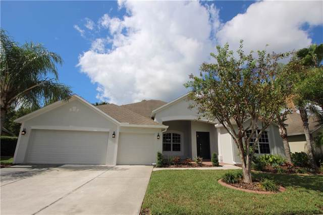 26712 Shoregrass Drive, Wesley Chapel, FL 33544 (MLS #O5817338) :: Cartwright Realty