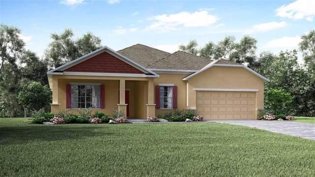 1696 Marsh Pointe Drive, Groveland, FL 34736 (MLS #O5817429) :: 54 Realty