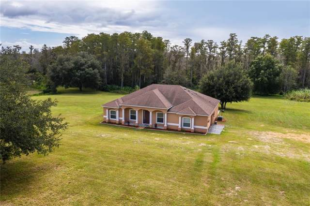 10702 Sandy Ridge Avenue, Clermont, FL 34714 (MLS #O5817432) :: Armel Real Estate
