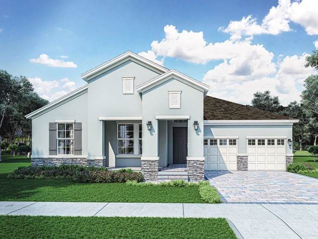10216 Merrymeeting  Bay Drive, Winter Garden, FL 34787 (MLS #O5817437) :: Bustamante Real Estate