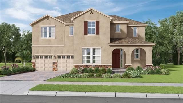 10210 Merrymeeting Bay Drive, Winter Garden, FL 34787 (MLS #O5817455) :: Bustamante Real Estate