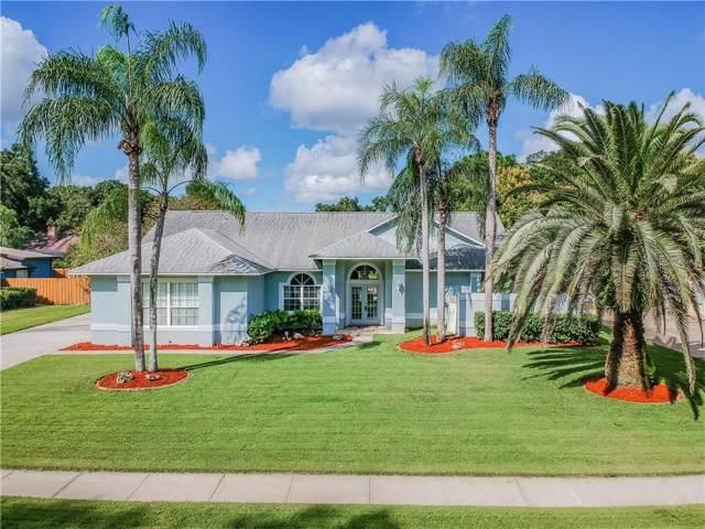 2245 Palm Vista Drive, Apopka, FL 32712 (MLS #O5817581) :: Ideal Florida Real Estate