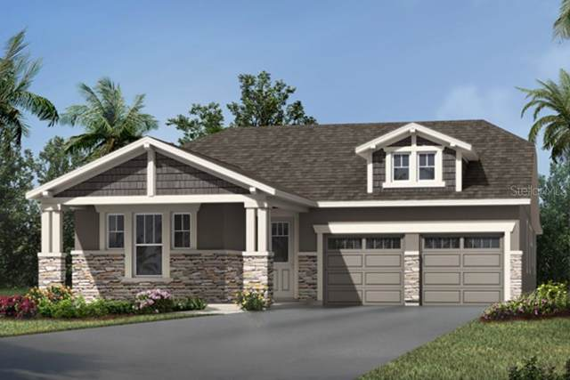 9164 Patrimonio Loop, Windermere, FL 34786 (MLS #O5817716) :: Florida Real Estate Sellers at Keller Williams Realty