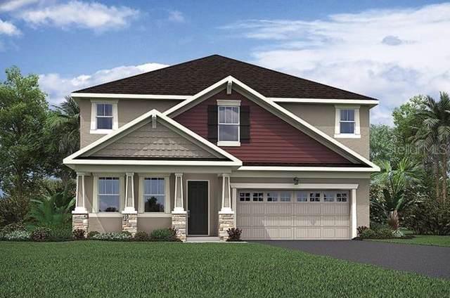 2340 Oxmoor Drive, Deland, FL 32724 (MLS #O5817737) :: Cartwright Realty