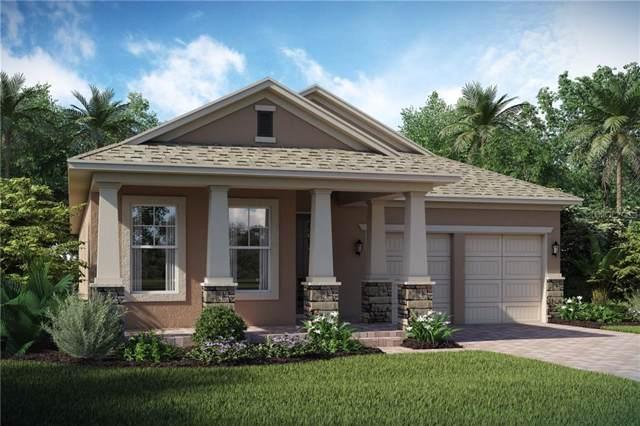 15784 Sweet Limetta Drive, Winter Garden, FL 34787 (MLS #O5818280) :: Cartwright Realty