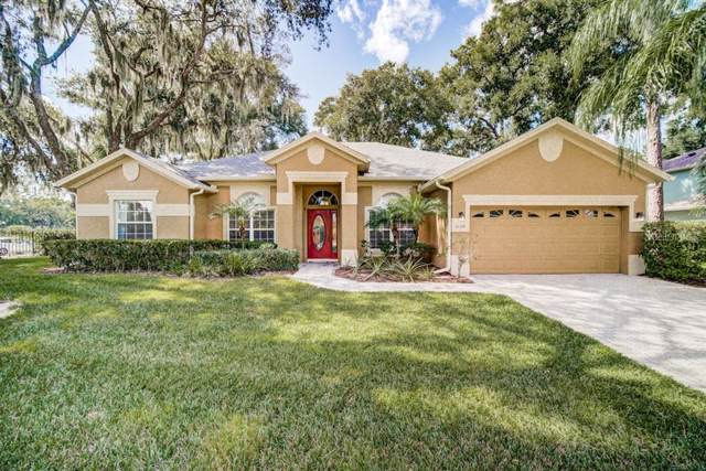 3126 Jamber Drive, Ocoee, FL 34761 (MLS #O5818484) :: Cartwright Realty