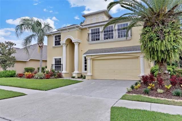 2550 Brookforest Drive, Wesley Chapel, FL 33544 (MLS #O5818881) :: Team Bohannon Keller Williams, Tampa Properties