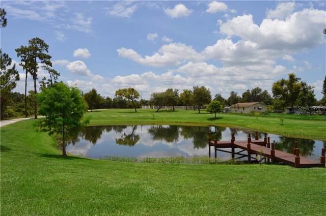 10621 Tyson Road, Orlando, FL 32832 (MLS #O5818991) :: Florida Real Estate Sellers at Keller Williams Realty