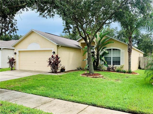 19208 Wood Sage Drive, Tampa, FL 33647 (MLS #O5819044) :: Team Bohannon Keller Williams, Tampa Properties