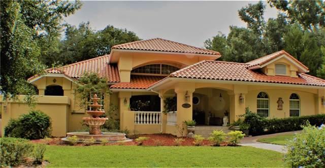 Address Not Published, Apopka, FL 32712 (MLS #O5819156) :: Bustamante Real Estate