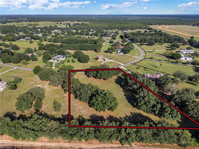 Derby Drive, Sorrento, FL 32776 (MLS #O5819386) :: Griffin Group