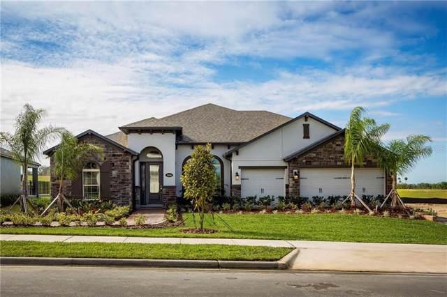 2456 Verde View Drive, Apopka, FL 32703 (MLS #O5819518) :: Ideal Florida Real Estate