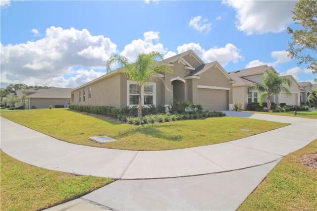 3329 Sagebrush Street, Harmony, FL 34773 (MLS #O5819560) :: Bustamante Real Estate