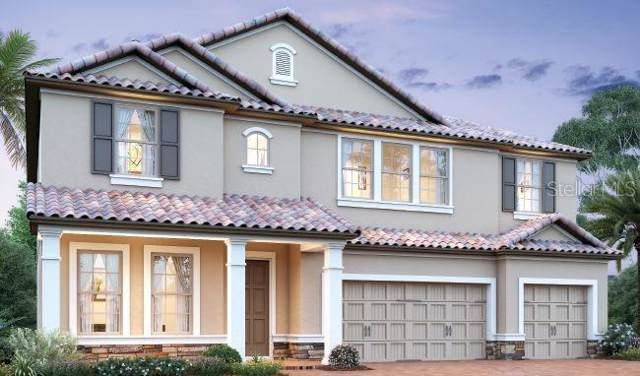11172 Lemon Lake Boulevard, Orlando, FL 32836 (MLS #O5819822) :: Baird Realty Group
