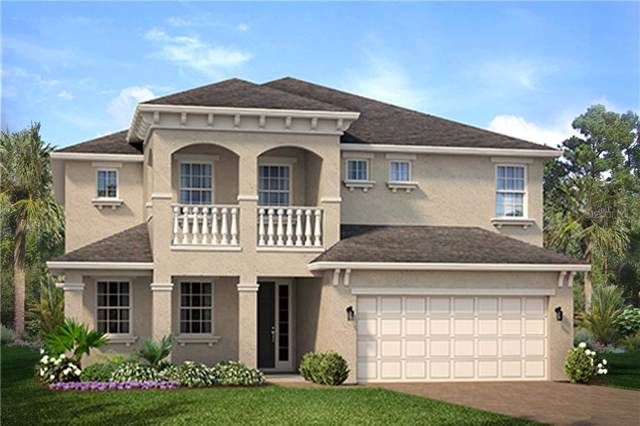 713 Ruby Court, Davenport, FL 33837 (MLS #O5819867) :: Rabell Realty Group