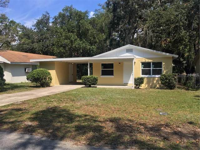 2320 Mispah Avenue, Leesburg, FL 34748 (MLS #O5819876) :: Team Bohannon Keller Williams, Tampa Properties
