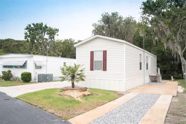1120 Rue De Dore, Tavares, FL 32778 (MLS #O5820292) :: Cartwright Realty