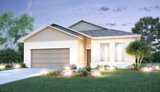 37026 Scenic Ridge Drive, Grand Island, FL 32735 (MLS #O5820348) :: NewHomePrograms.com LLC