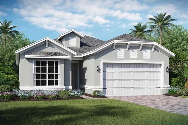 1955 Estuary Lane, Kissimmee, FL 34747 (MLS #O5820415) :: RE/MAX Realtec Group